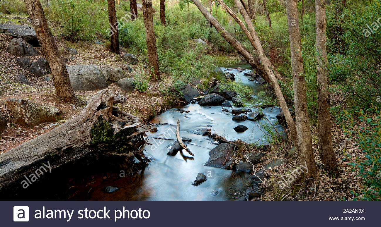 piesse-brook-in-the-perth-hills-just-before-sunset-western-australia-2A2AN9X.jpg
