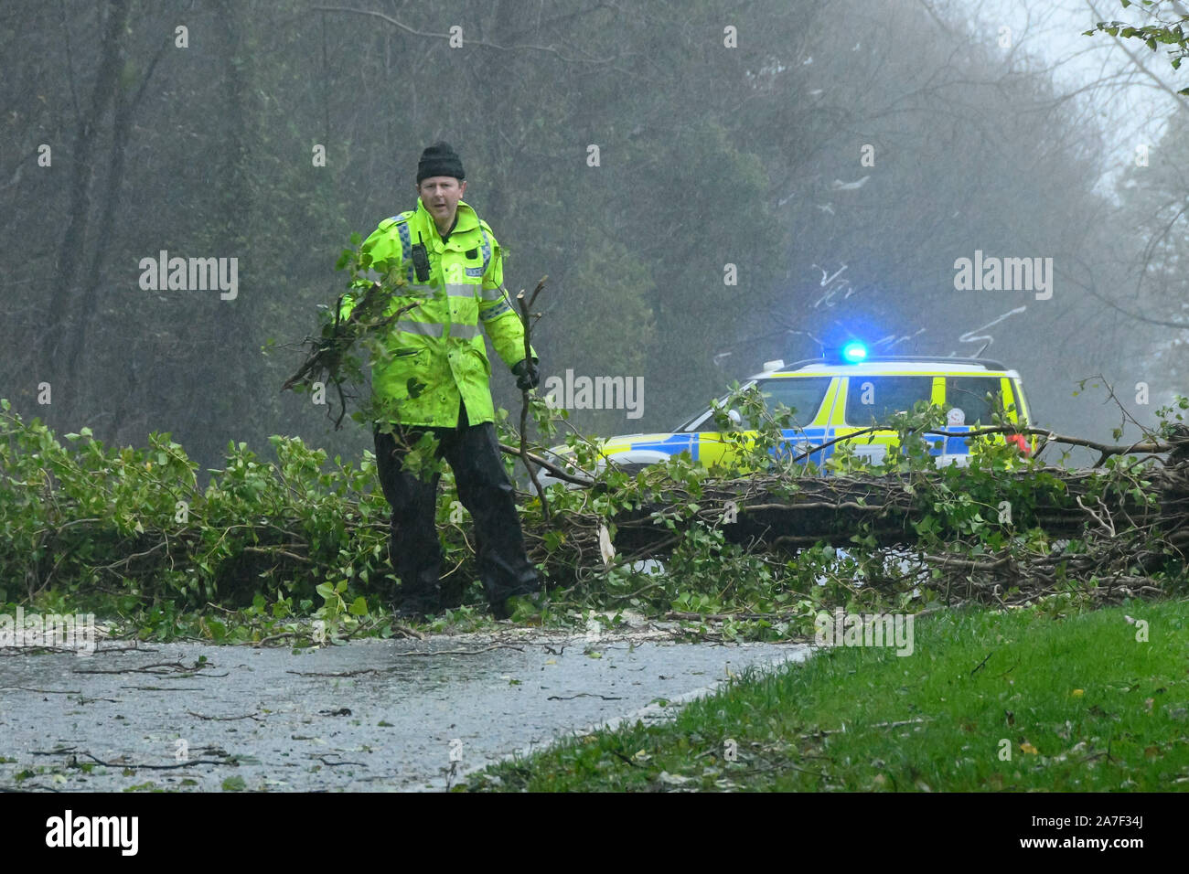 Dorchester, Dorset, UK. 2nd Nov, 2019. UK Weather: A Police officer helps clear up the fallen tree after stormy winds bring down trees across the A35 near Dorchester in Dorset closing the road. Picture Credit: Graham Hunt/Alamy Live News Stock Photo