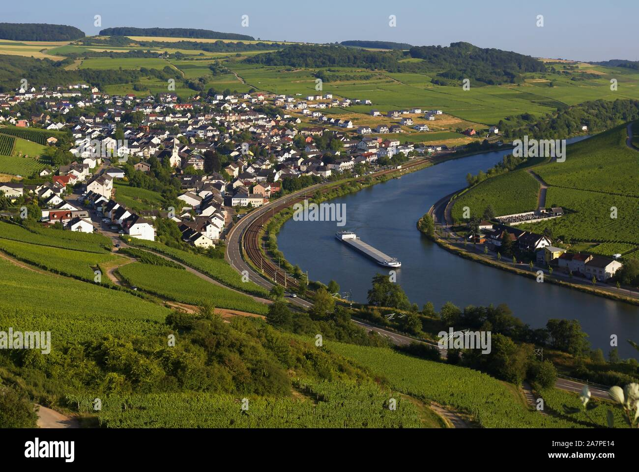 high-vantage-point-view-of-vinyards-near-nittel-and-moselle-river-rhineland-palatinate-germany-2A7PE14.jpg