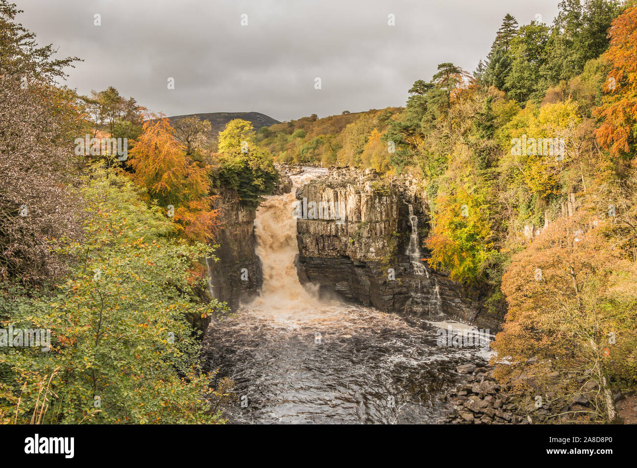 autumn-colours-at-high-force-waterfall-teesdale-from-the-pennine-way-long-distance-footpath-2A8D8P0.jpg