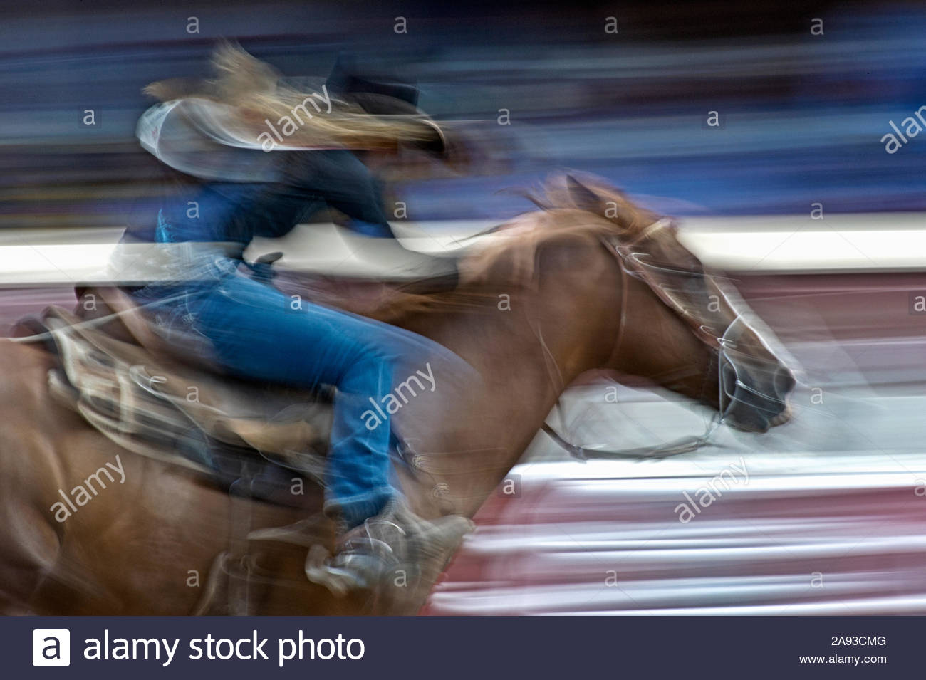 barrel-racer-at-the-calgary-stampede-2A93CMG.jpg