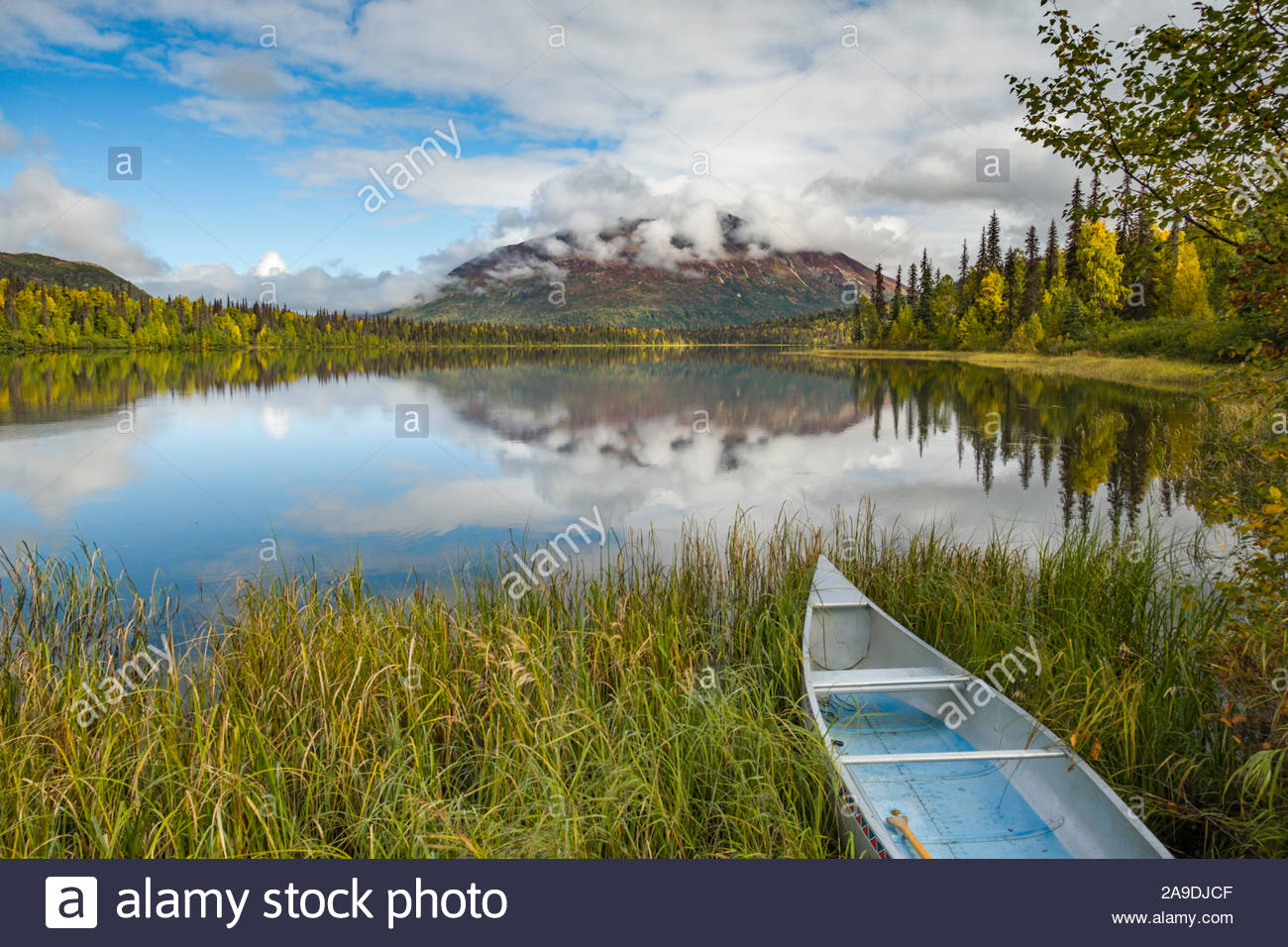 empty-aluminum-canoe-on-lakeshore-of-miami-lake-talkeetna-mountains-matanuska-susitna-alaska-usa-2A9DJCF.jpg