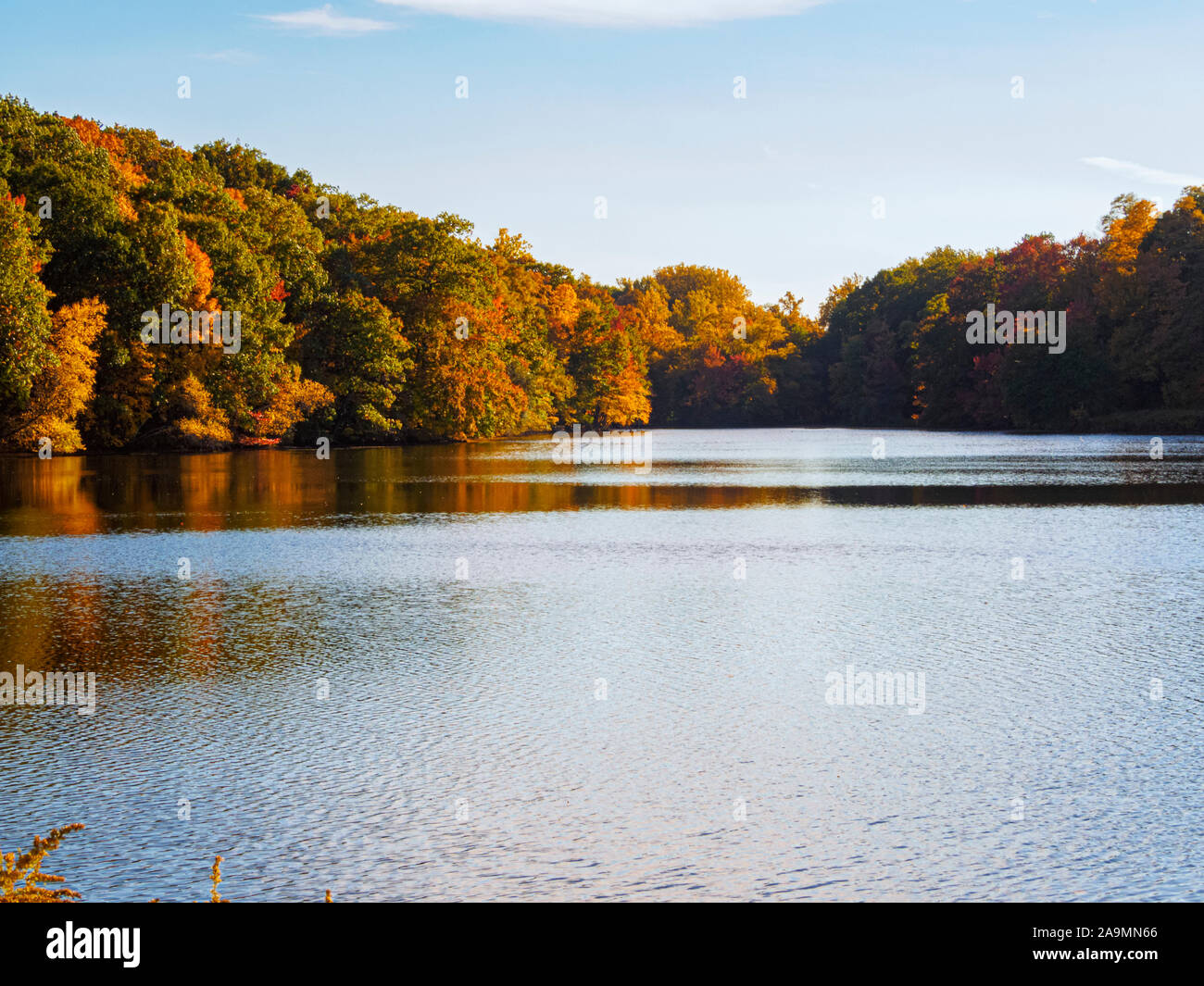 fall-in-new-york-state-at-rockefeller-state-park-preserve-beautiful-autumn-leaves-reflected-in-swan-lake-2A9MN66.jpg