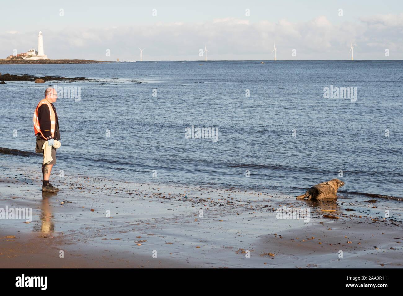 a-marine-mammal-medic-shepherds-a-strand