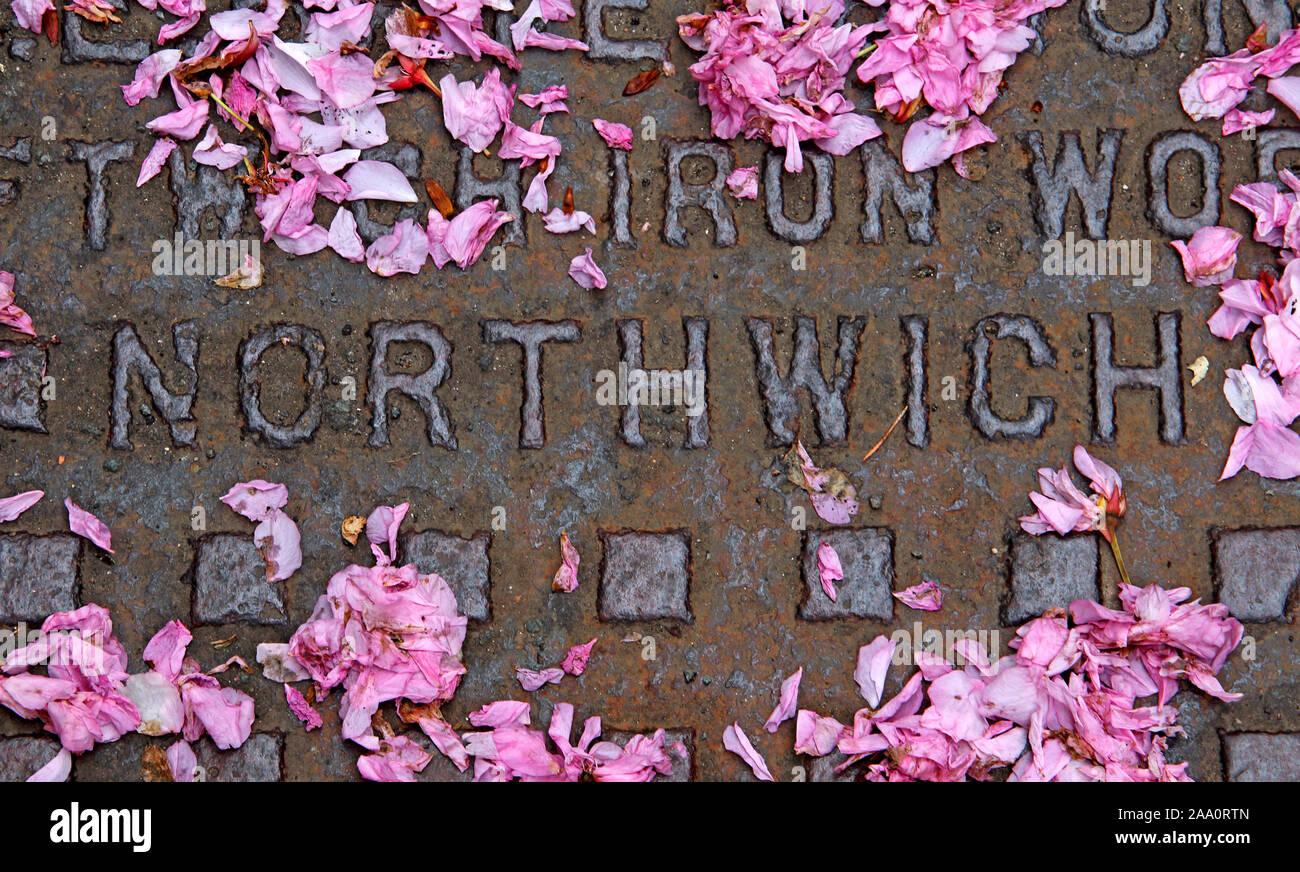 HotpixUK,@HotpixUK,GoTonySmith,England,UK,Cheshire,cover,manhole,man hole,spring with pink apple blossom,Iron Grid,spring,embossed,iron,works