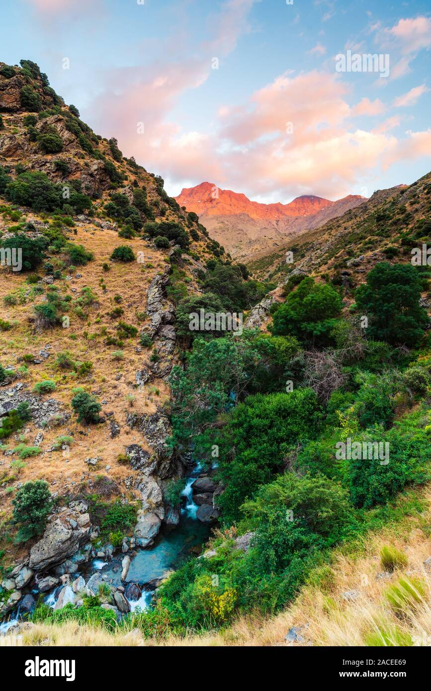 1408-18-gjar-sierra-spain-the-peak-of-mulhacn-3-482-m-spains-tallest-mountain-photographed-from-the-hiking-trail-vereda-de-la-estrella-rio-g-2ACEE69.jpg