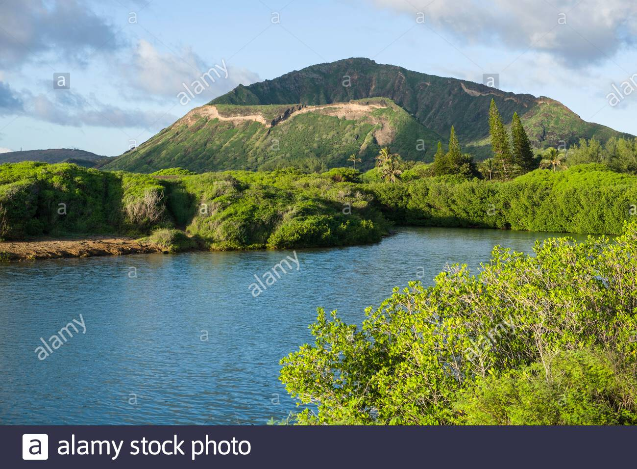 east-side-of-koko-crater-seen-from-the-kaiwi-state-scenic-shoreline-honolulu-oahu-hawaii-usa-2ADRHMD.jpg