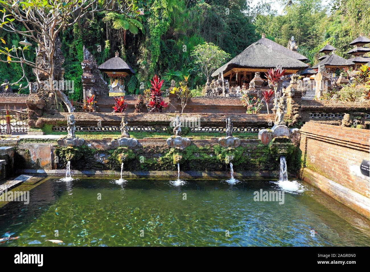 one-of-seven-pools-offering-holy-water-or-bathing-at-pura-gunung-kawi-sebatu-temple-tegallelang-near-ubud-bali-indonesia-2AGR0N0.jpg