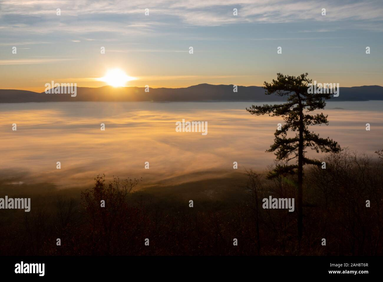 usa-virginia-va-luray-shenandoah-river-valley-ground-fog-covers-the-valley-page-county-sunrise-2AH8T6R.jpg
