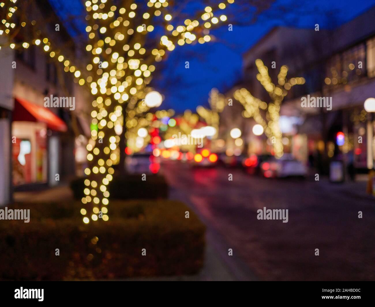 marion-street-downtown-oak-park-illinois