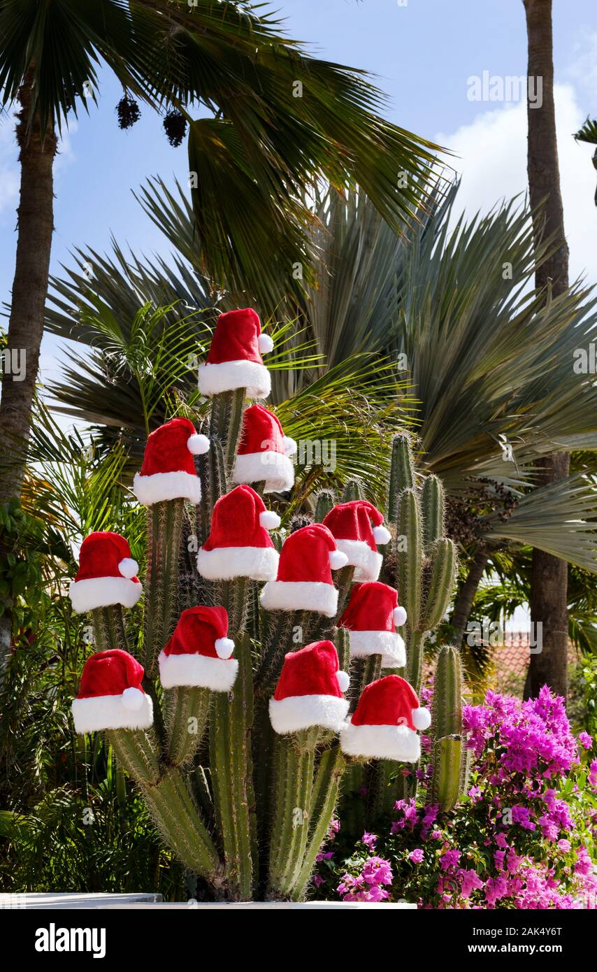 santa-claus-christmas-hats-placed-on-top