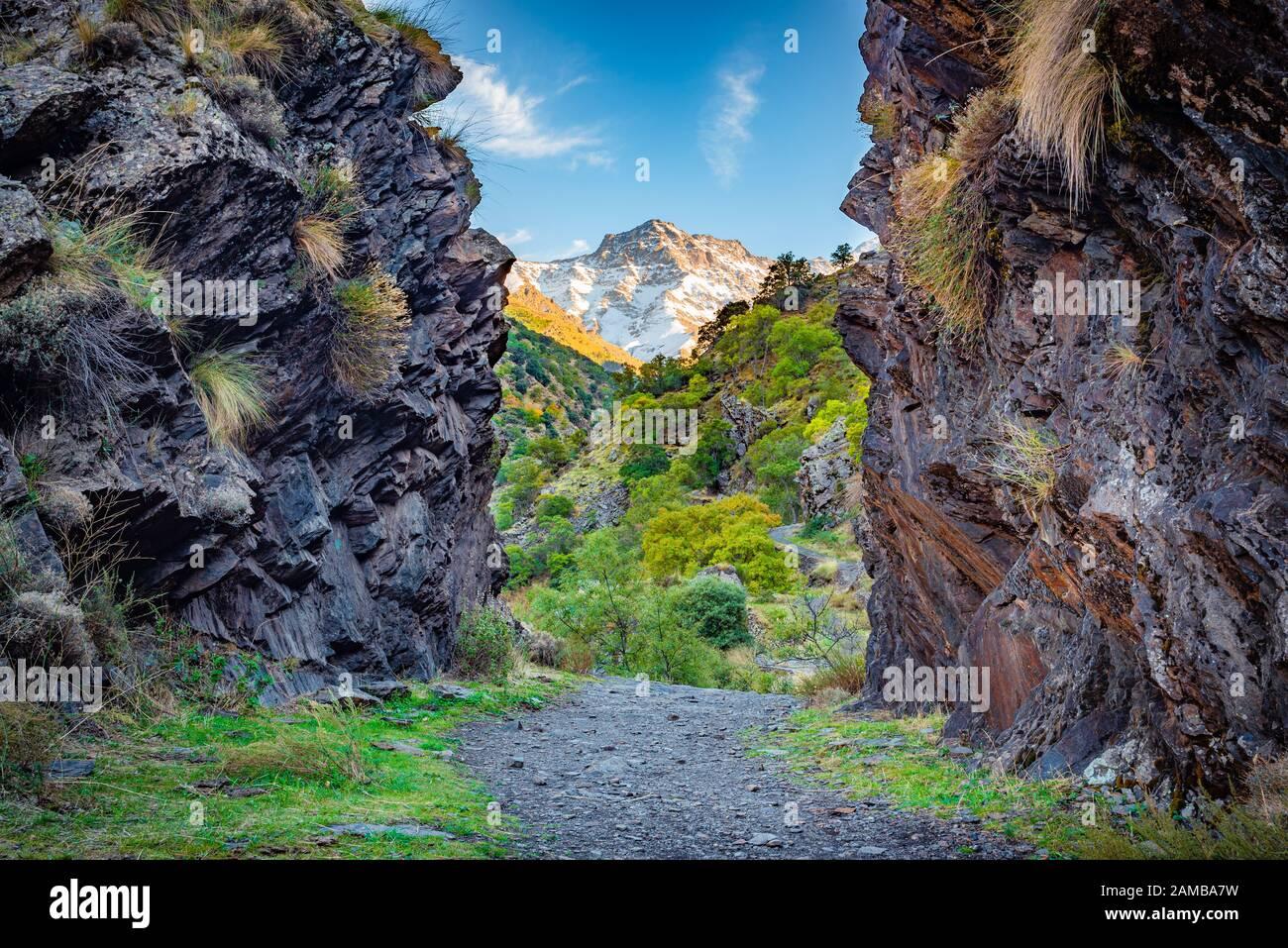 gjar-sierra-spain-october-27-2019-beautiful-view-from-the-hiking-trail-vereda-de-la-estrella-in-the-natural-park-of-sierra-nevada-2AMBA7W.jpg