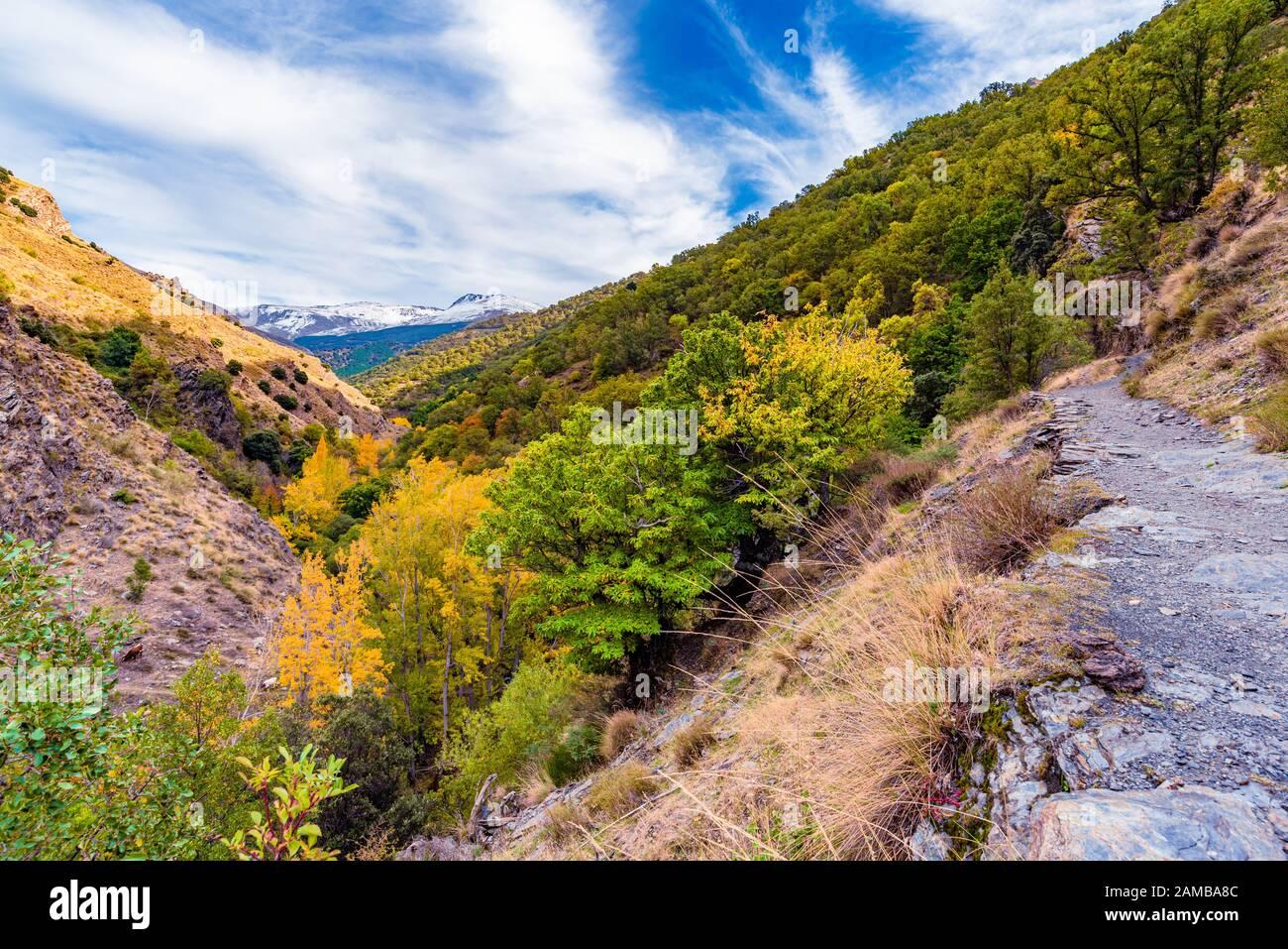 gjar-sierra-spain-october-27-2019-beautiful-view-from-the-hiking-trail-vereda-de-la-estrella-in-the-natural-park-of-sierra-nevada-2AMBA8C.jpg