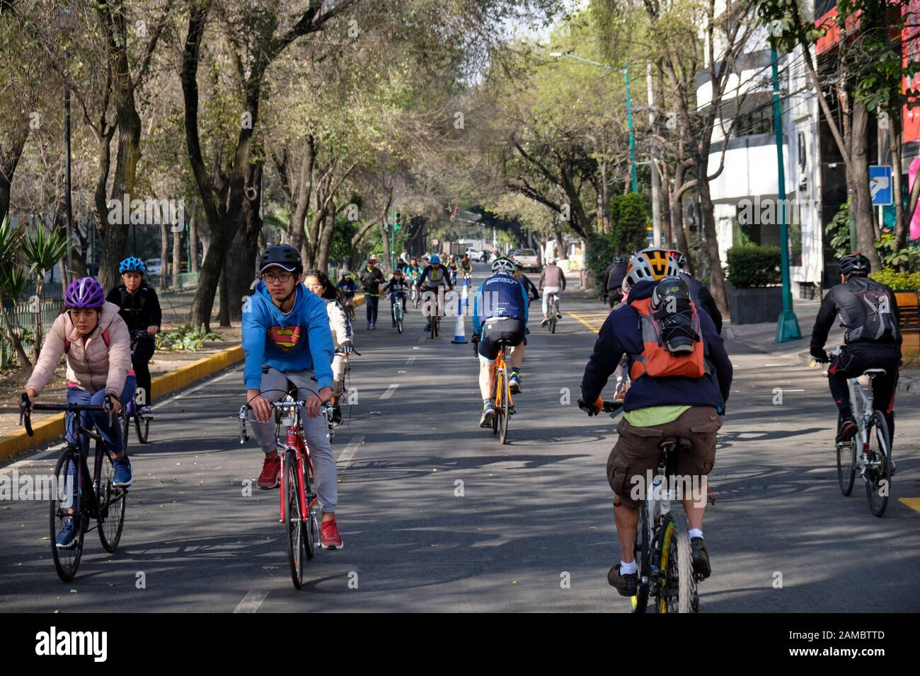 mexico-city-mexico-january-12th-2020-cyclists-on-the-tree-lined-traffic-free-streets-of-la-condesa-neighbourhood-muevete-en-bici-is-a-government-backed-initiative-that-aims-to-promote-a-healthy-and-active-lifestyle-for-residents-of-mexico-city-cyclists-joggers-families-and-even-their-dogs-take-over-the-otherwise-congested-streets-of-the-city-every-sunday-morning-credit-meanderingemu-alamy-live-news-2AMBTTD.jpg