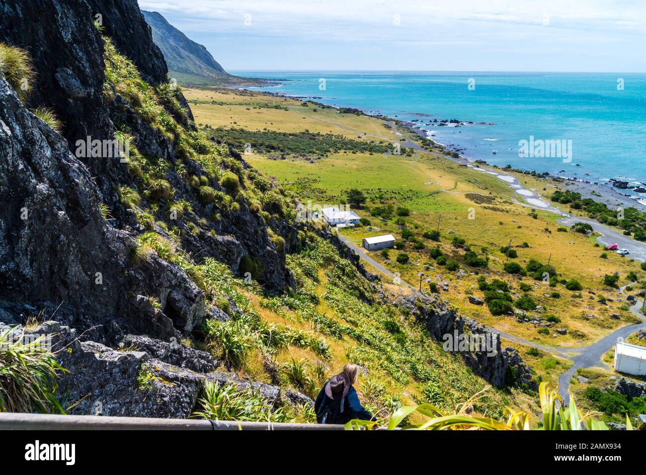 cape-palliser-wairarapa-north-island-new-zealand-2AMX934.jpg