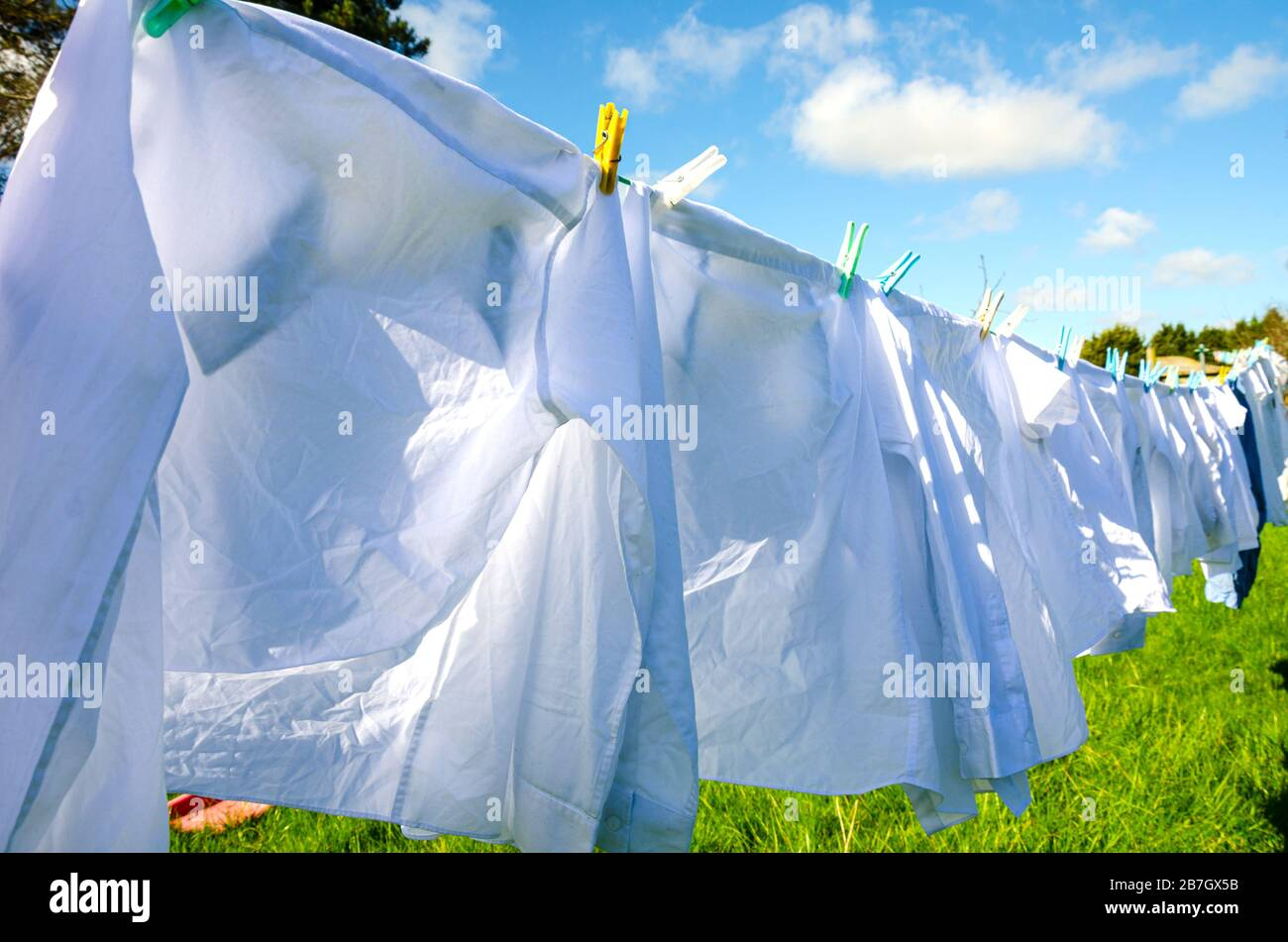 shirt-clothes-washing-line-laundry-drying-white-apparel-clean-cleanliness-cloth-clothes-line-clothesline-clothing-cotton-dry-fashion-g-2B7GX5B.jpg