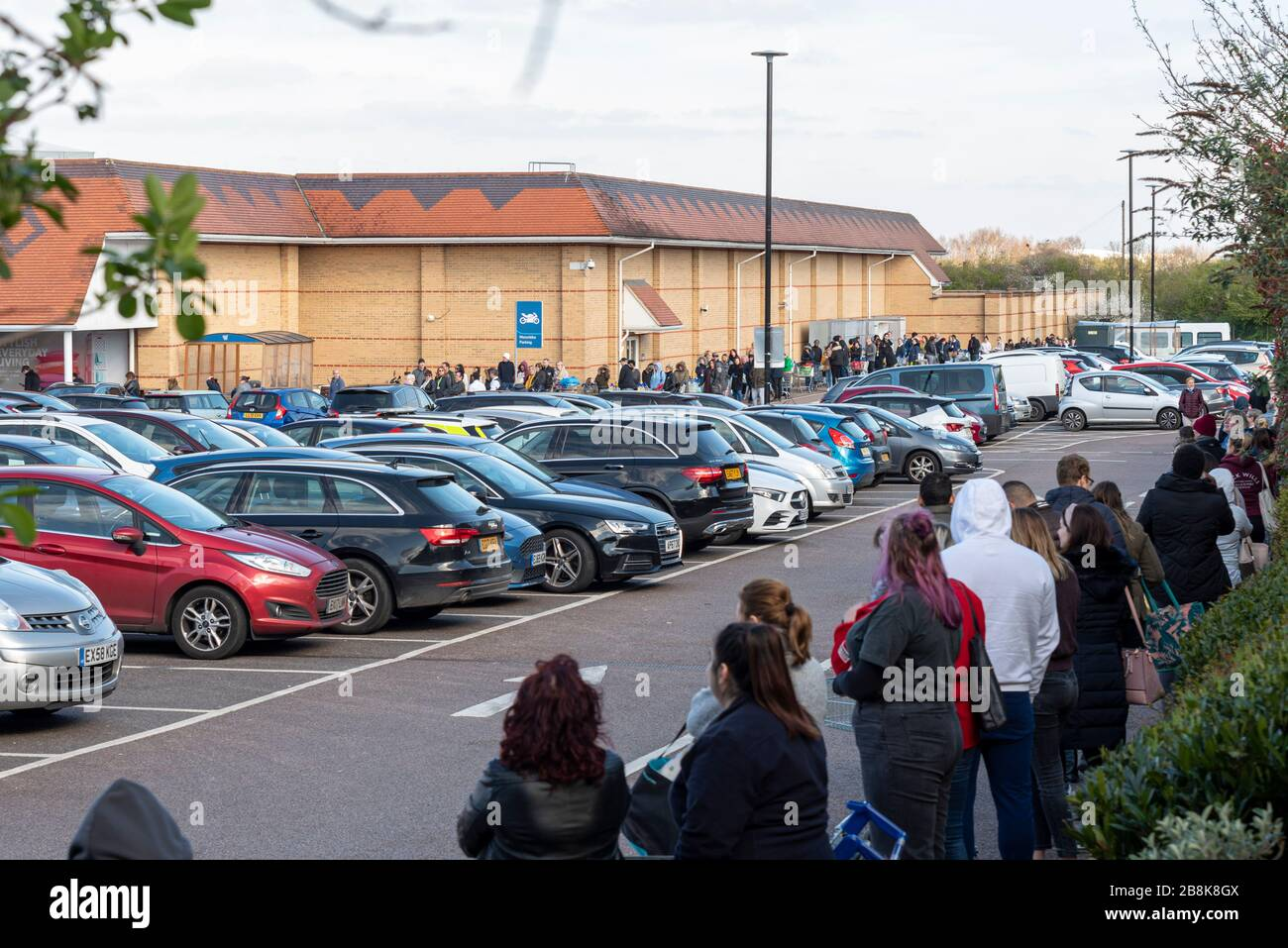 tesco-supermarket-in-southend-on-sea-with-huge-numbers-of-shoppers-queuing-in-morning-panic-buying-shopping-standing-close-together-during-covid-19-2B8K8GX.jpg