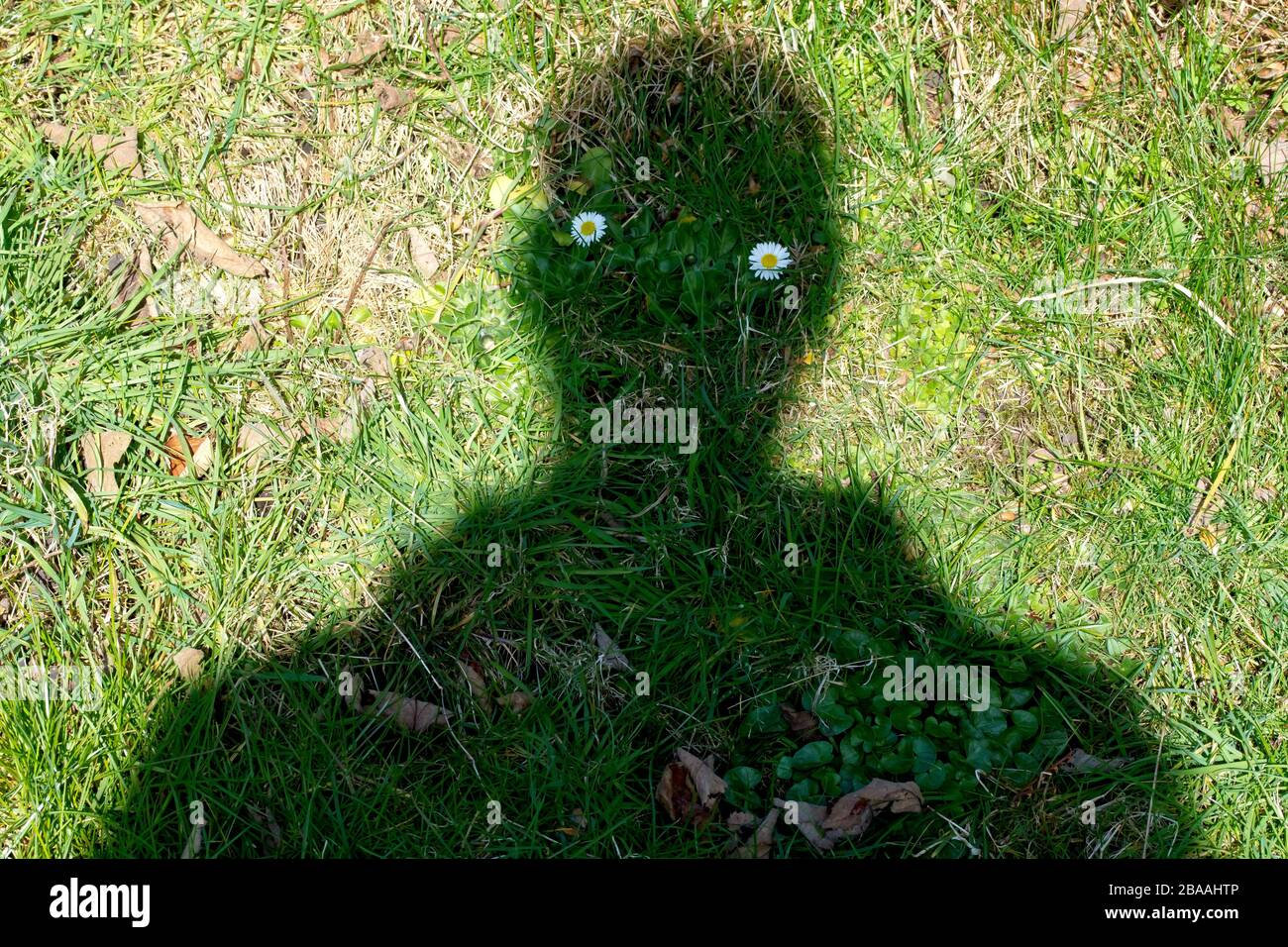 a-shadowman-the-result-of-a-weird-juxtap