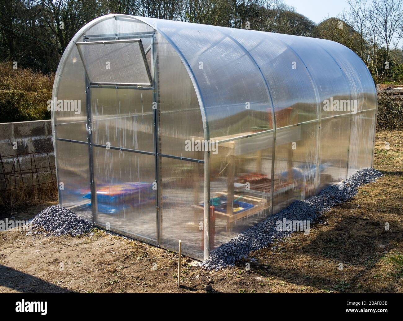 polycarbonate-greenhouse-in-a-domestic-garden-2BAFD3B.jpg