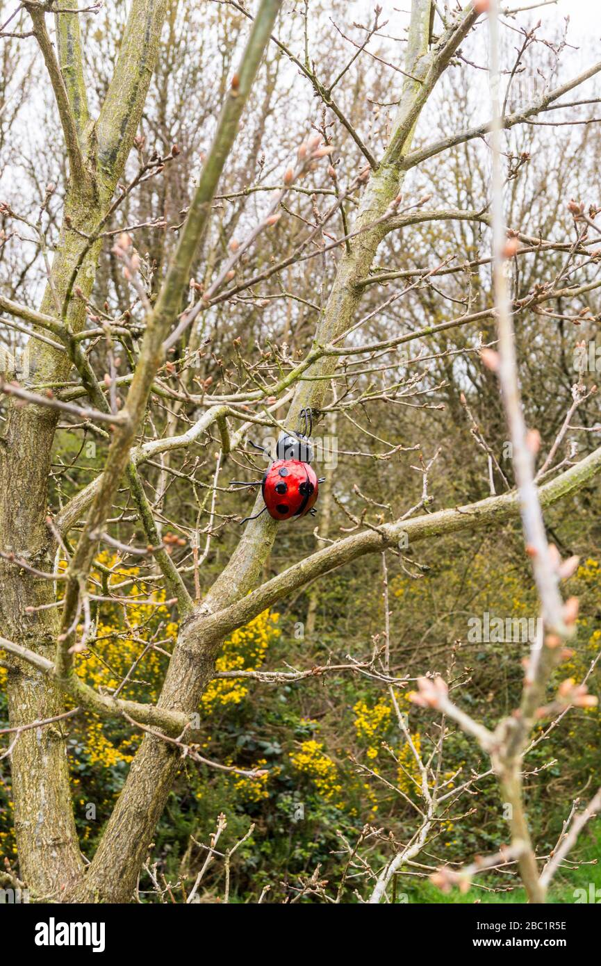a-ladybird-sculpture-on-a-tree-in-epping-forest-south-woodford-london-england-2BC1R5E.jpg