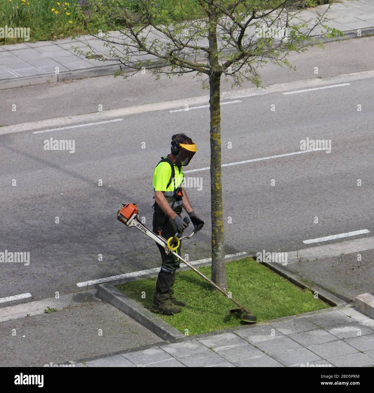 Santander Spain April 7 2020 View from lock down Municipal or council or local authority gardener strimming grass around a tree at the roadside Stock Photo