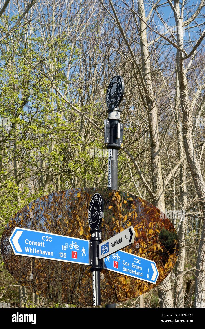 Vandalised direction signpost on the coast to coast cycle path in Washington NE England, with an inset showing the undamaged sign. Stock Photo