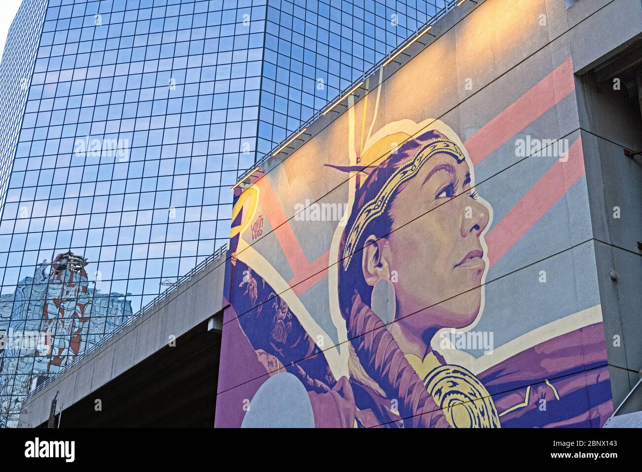 street-art-on-a-building-depicting-a-young-indigenous-cree-woman-in-downtown-calgary-alberta-canada-2BNX143.jpg