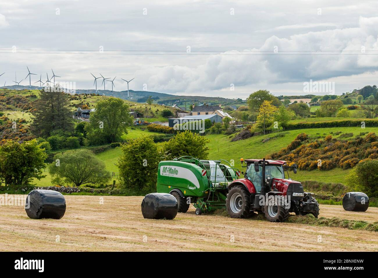 caheragh-north-west-cork-ireland-16th-may-2020-silage-baling-took-place-on-the-farm-of-patrick-collins-in-caheragh-north-today-patrick-hired-jonathan-crowley-contractors-of-bantry-to-bale-the-silage-using-a-case-165-tractor-and-a-mchale-fusion-3-plus-balerthe-silage-will-be-used-for-winter-feed-for-dairy-cows-credit-ag-newsalamy-live-news-2BNXENW.jpg