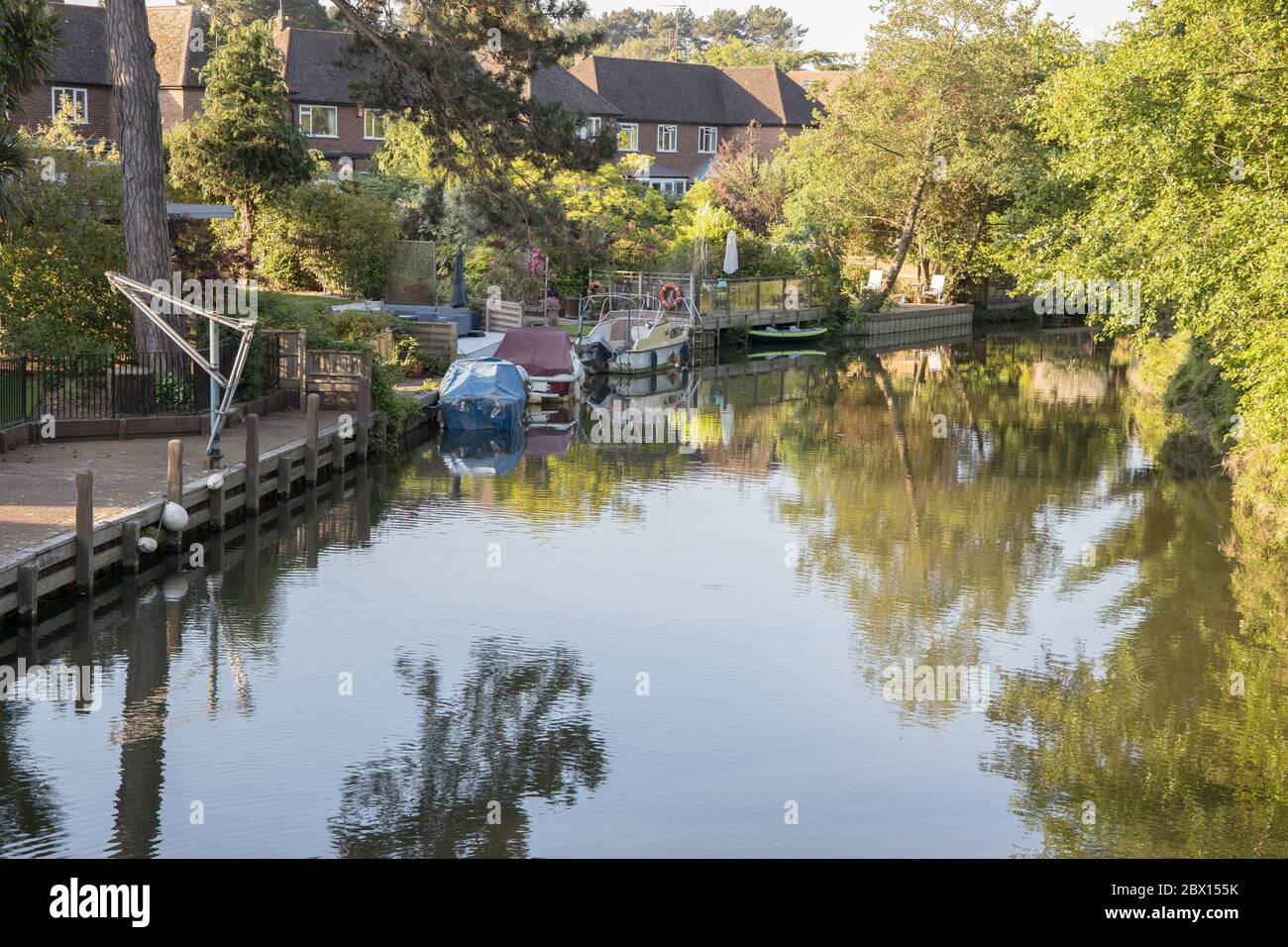 homes on the banks of the the wey navigation at weybridge surrey Stock Photo