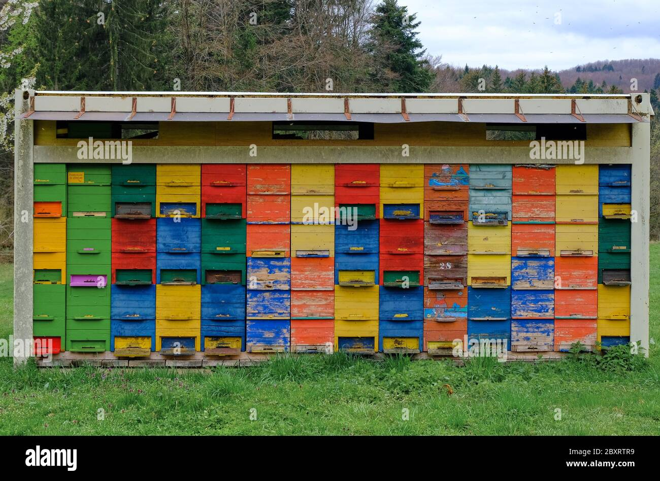 old-painted-rustic-beehives-in-field-with-fading-colours-rural-slovenia-april-2019-2BXRTR9.jpg