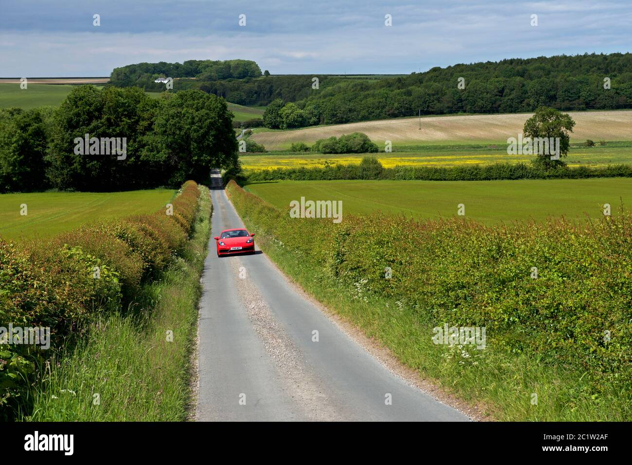 car-on-single-track-road-in-the-yorkshire-wolds-east-yorkshire-england-uk-2C1W2AF.jpg