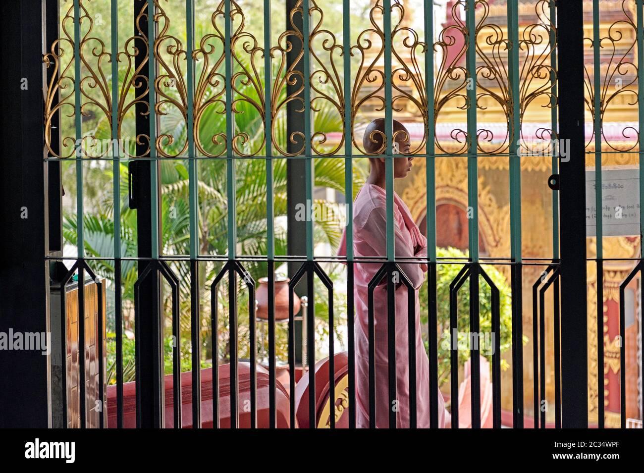novice-nun-at-the-entrance-to-the-buddha-shrine-at-the-sakyadhita-thilashin-nunnery-school-in-sagaing-myanmar-2C34WPF.jpg