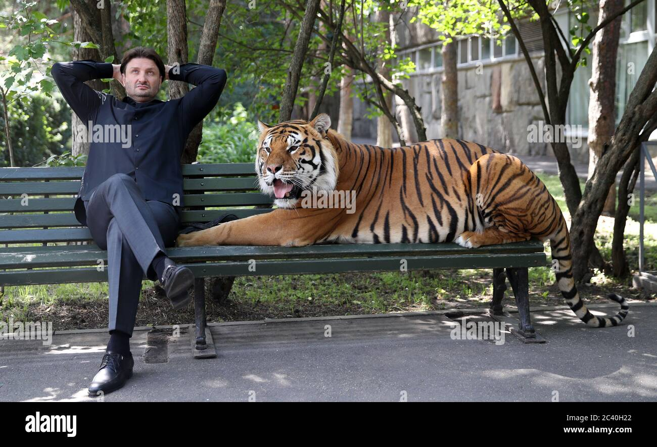 Moscow, Russia. 23rd June, 2020. Edgard Zapashny, general director of the Great Moscow State Circus, and a tiger sit on a bench by a staff entrance to the Great Moscow State Circus. Credit: Vyacheslav Prokofyev/TASS/Alamy Live News Stock Photo