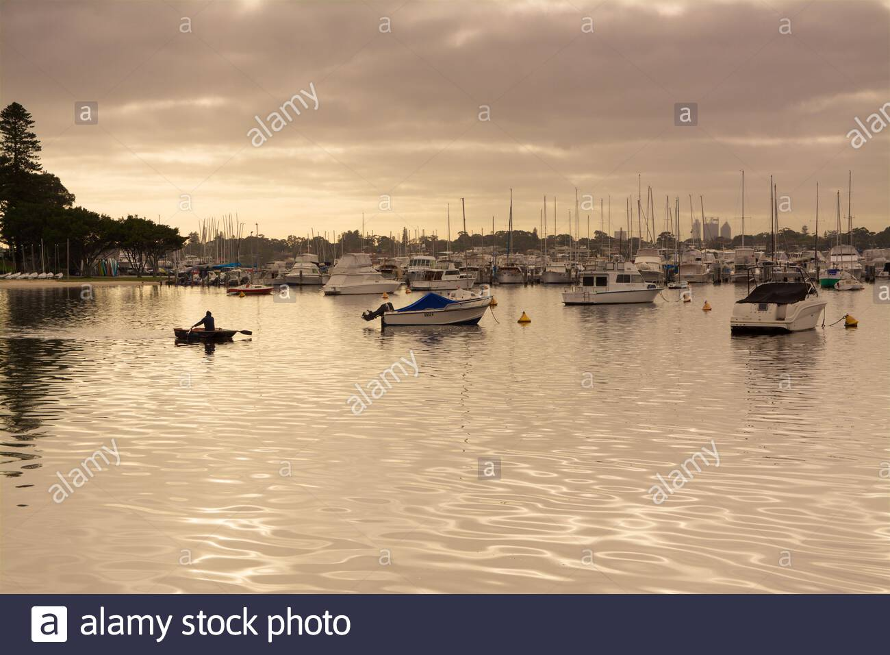 a-man-rowing-a-boat-in-atmospheric-golden-light-near-the-freshwater-bay-yacht-club-on-the-swan-river-in-perth-western-australia-2C4J1TK.jpg