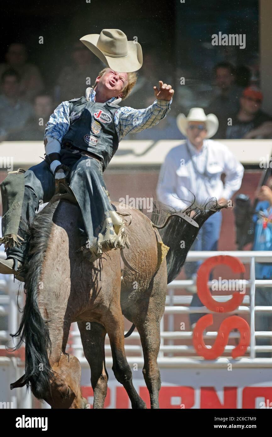 bareback-rider-at-the-calgary-stampede-alberta-canada-2C6C7M9.jpg