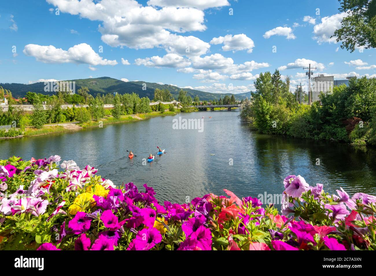 A group of kayakers enjoy a beautiful summer day on Sand Creek River and Lake Pend Oreille in the downtown area of Sandpoint, Idaho, USA Stock Photo