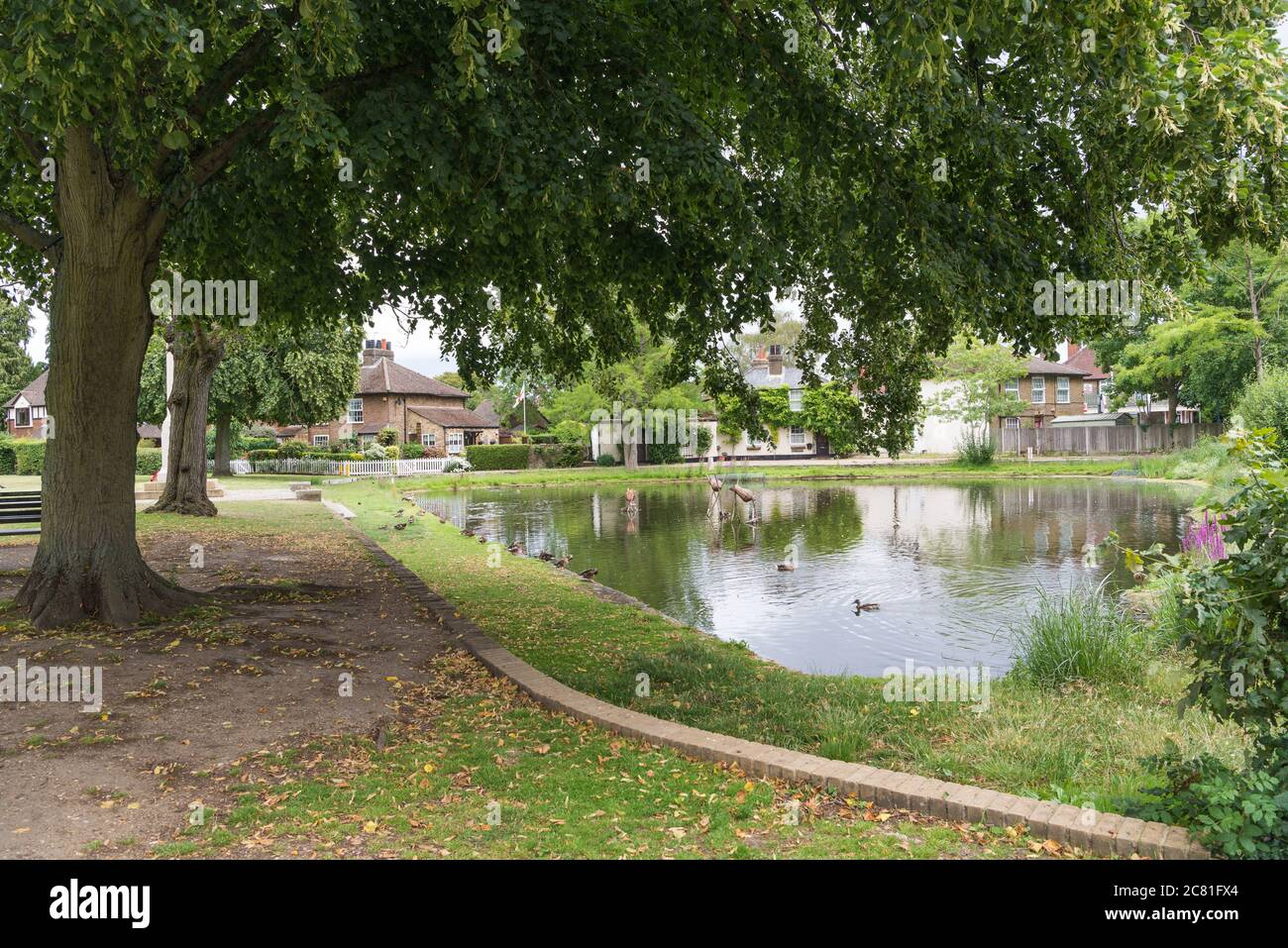 The duckpond on Centenary Field, Harefield village green,Middlesex, England, UK Stock Photo