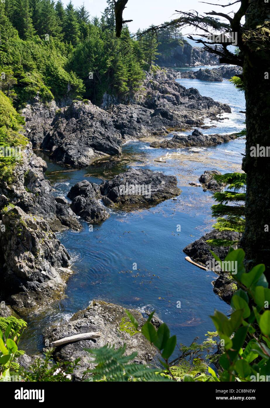 Rocky shoreline as seen from the Wild Pacific Trail in Ucluelet, British Columbia, Canada Stock Photo