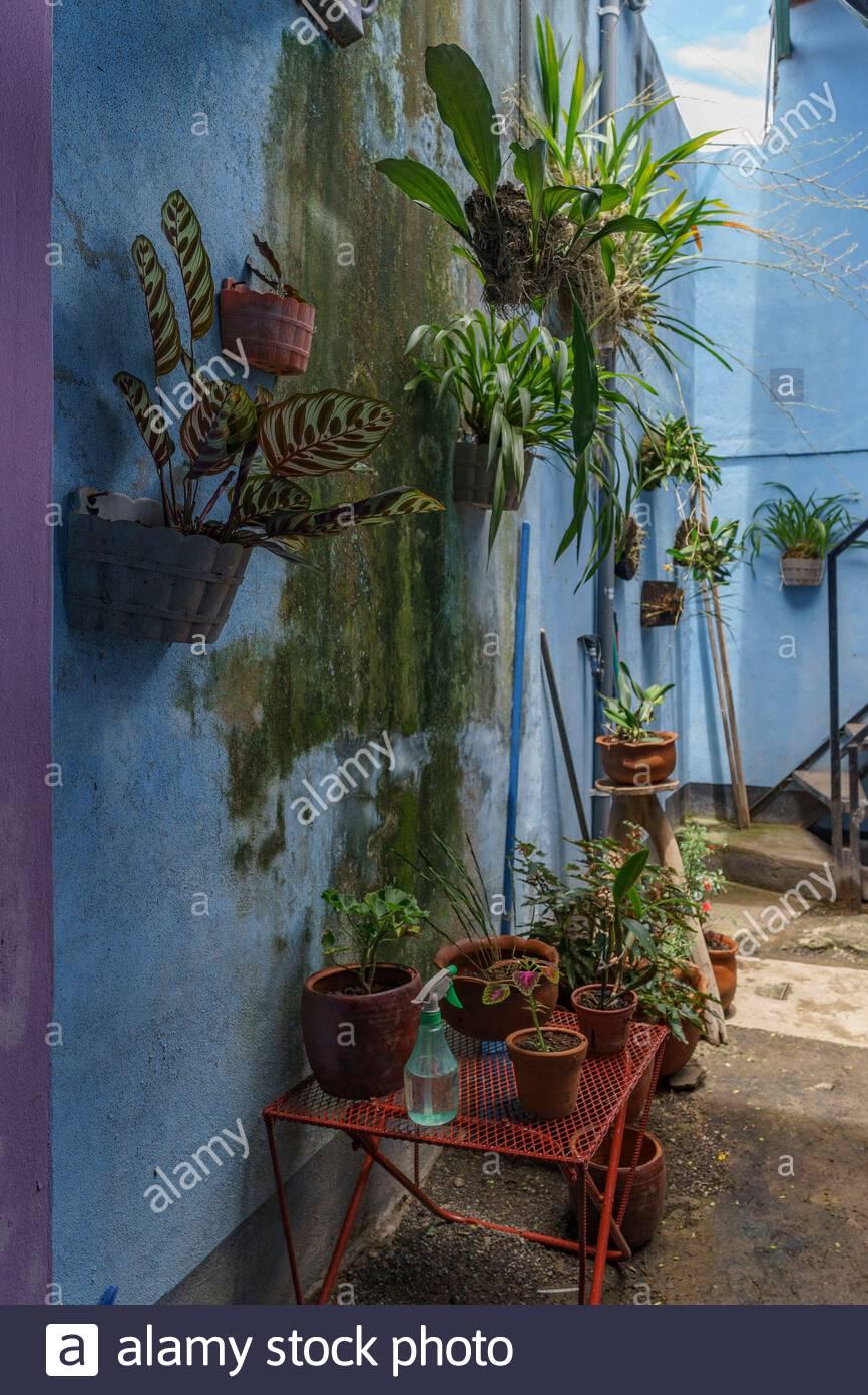 this-vertical-garden-also-has-plants-in-