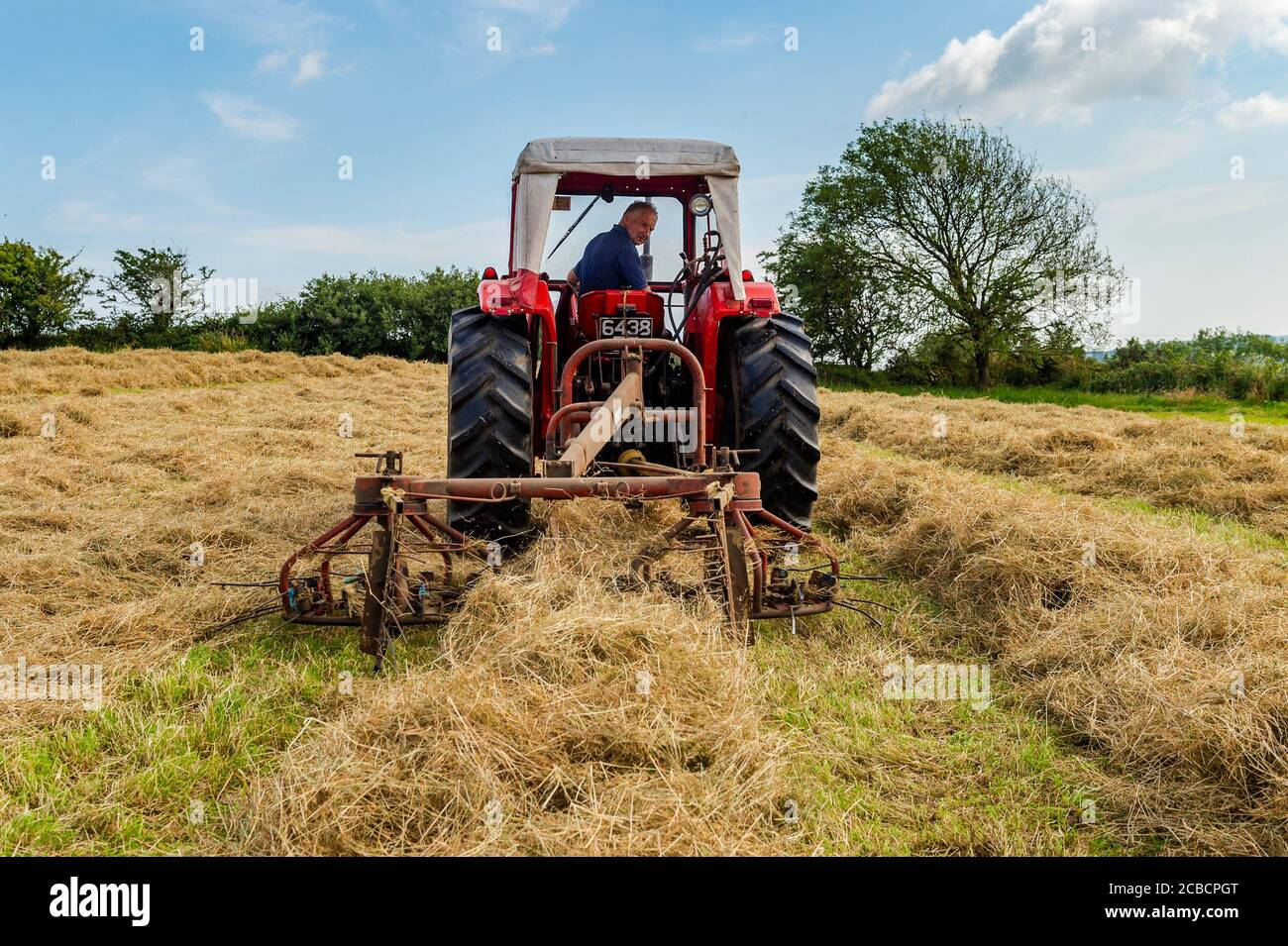 drinagh-west-cork-ireland-12th-aug-2020-drinagh-farmer-george-wilson-uses-a-1970s-massey-ferguson-168-and-a-1970s-haybob-to-fluff-the-cut-hay-and-narrow-the-swath-before-the-hay-is-baled-credit-ag-newsalamy-live-news-2CBCPGT.jpg