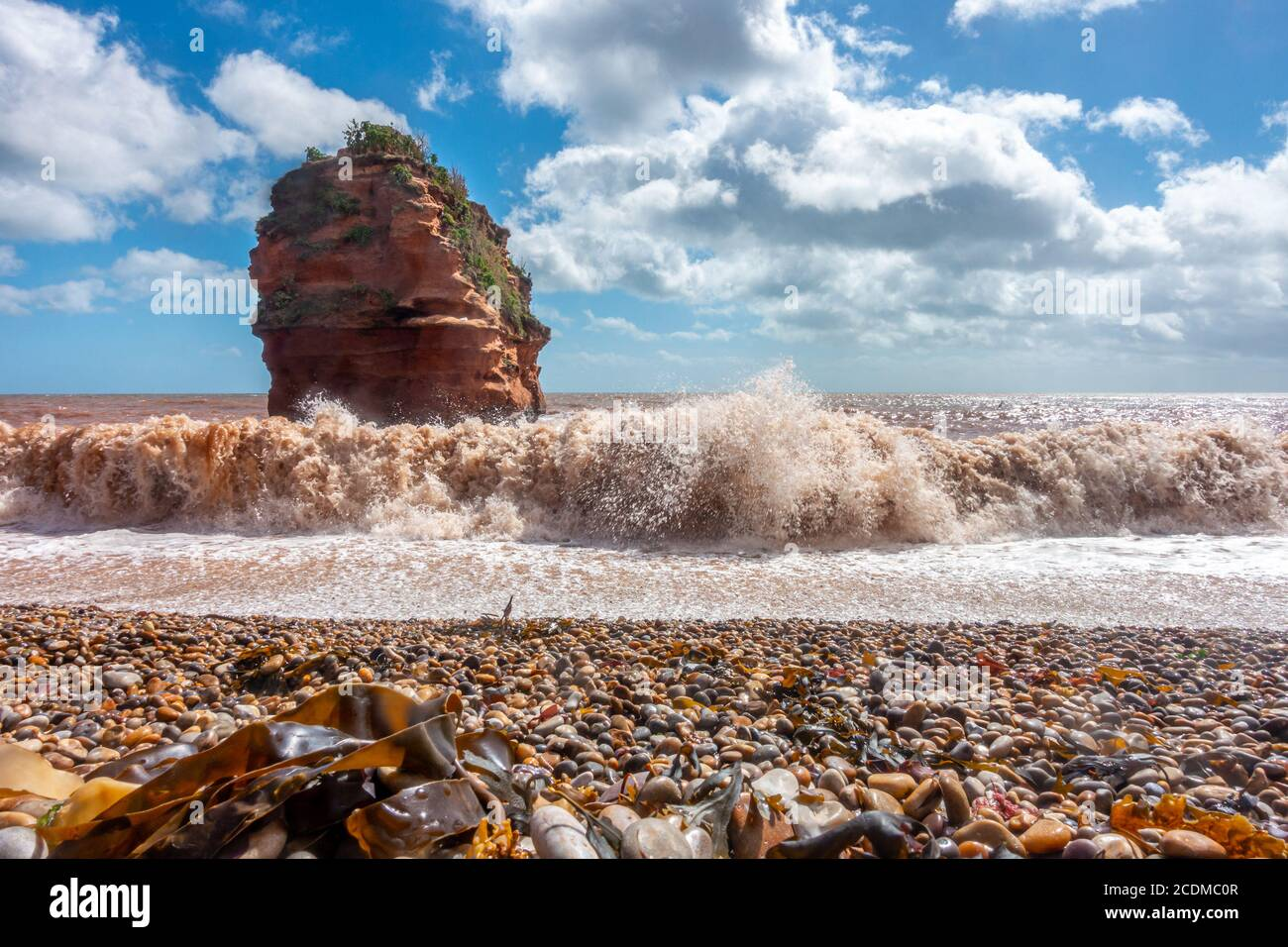 waves-roll-onto-the-beach-at-ladram-bay-in-south-devon-england-sandstone-cliffs-have-eroded-over-time-to-leave-a-free-standing-stack-2CDMC0R.jpg