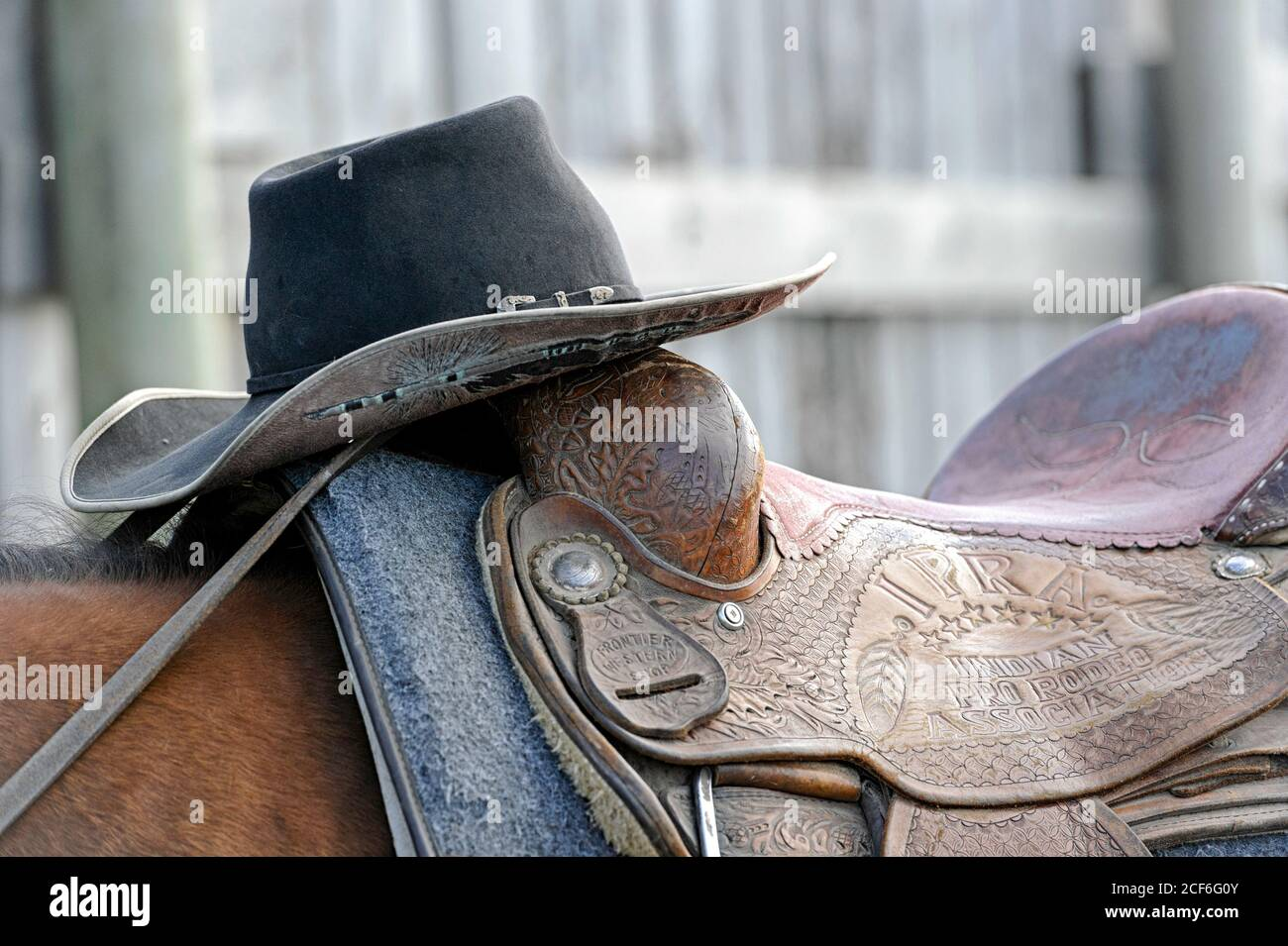 cowboy-hat-and-horse-saddle-at-the-indian-rodeo-grounds-tsuu-tina-nation-alberta-canada-2CF6G0Y.jpg