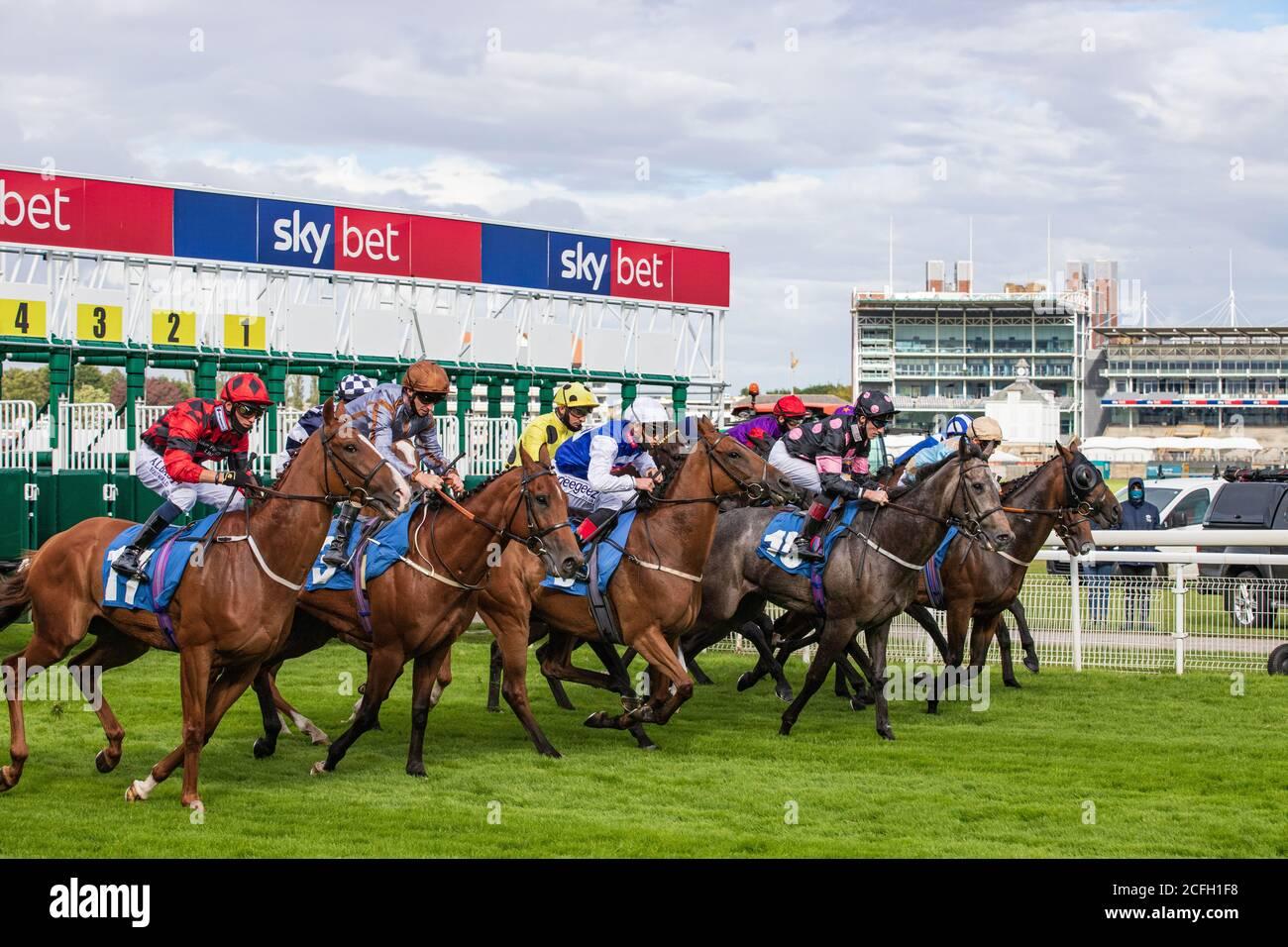 horses-leave-the-start-of-the-sky-bet-ha