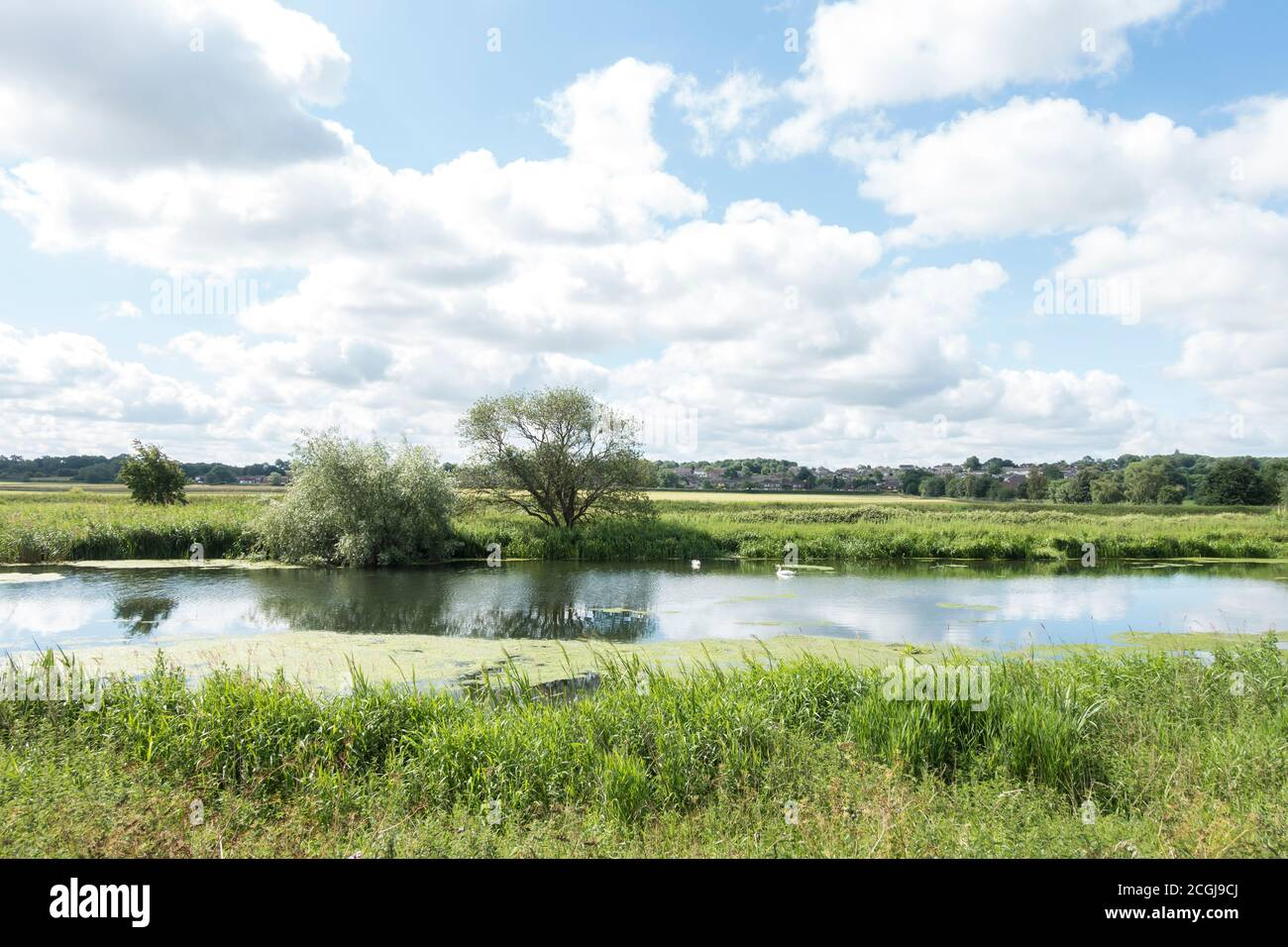 looking-over-river-witham-from-the-viking-way-towards-washingborough-lincolnshire-june-2020-2CGJ9CJ.jpg