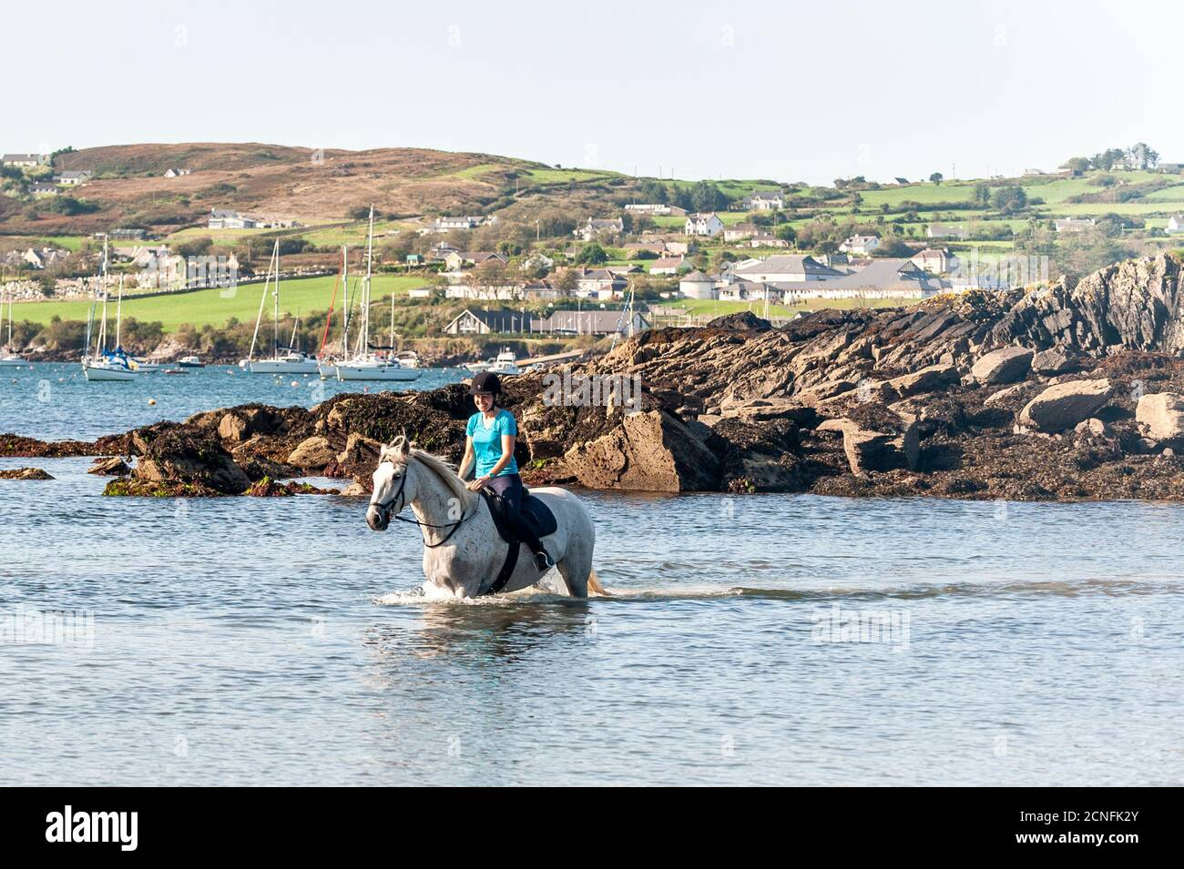 schull-west-cork-ireland-18th-sep-2020-on-a-warm-and-sunny-day-in-west-cork-gretta-omahony-from-bantry-rides-bob-in-the-sea-at-schull-the-day-will-be-mostly-dry-with-top-temps-of-16-to-21c-credit-ag-newsalamy-live-news-2CNFK2Y.jpg