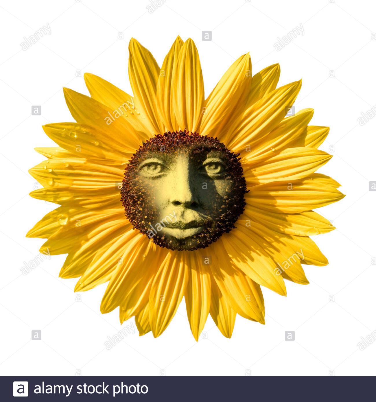 sun-deity-solar-sun-god-sunburst-energy-