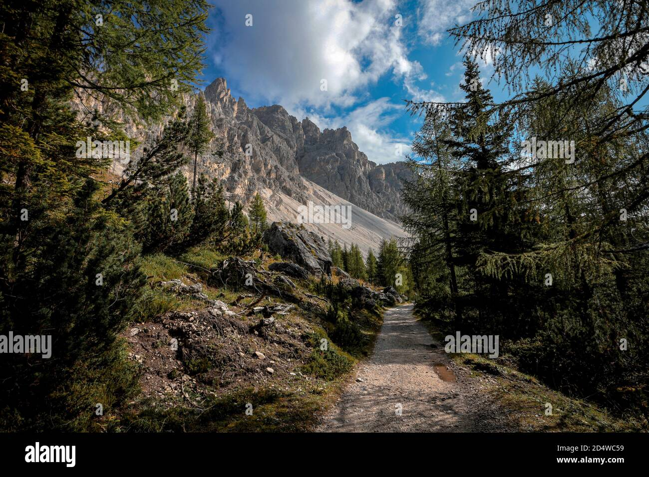 hiking-path-in-the-mountain-landscape-of