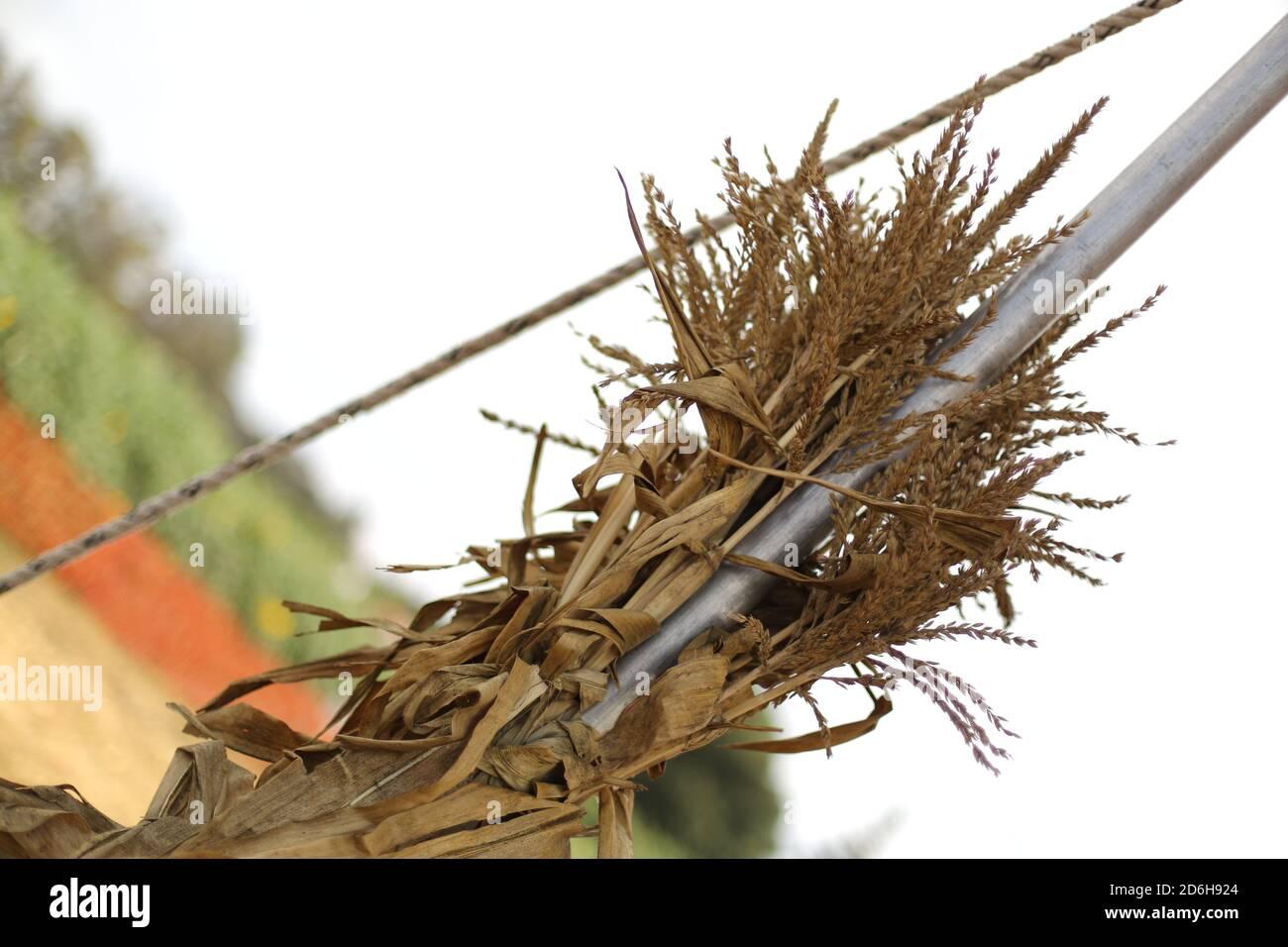 fall-festival-at-underwood-farms-moorpark-california-usa-2D6H924.jpg