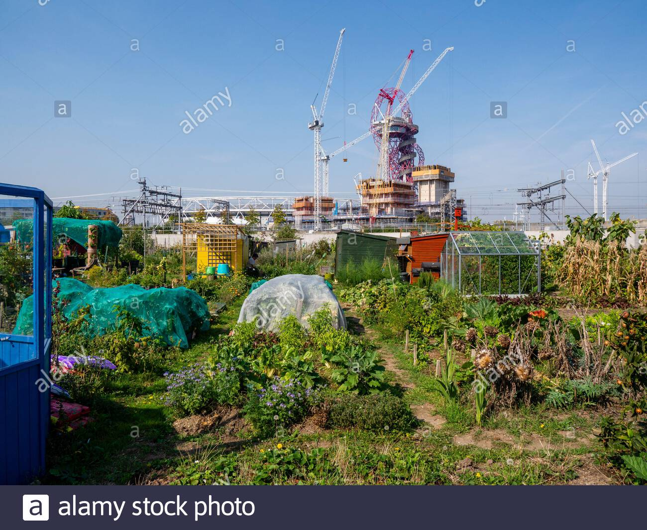 pudding-mill-allotments-by-the-olympic-p