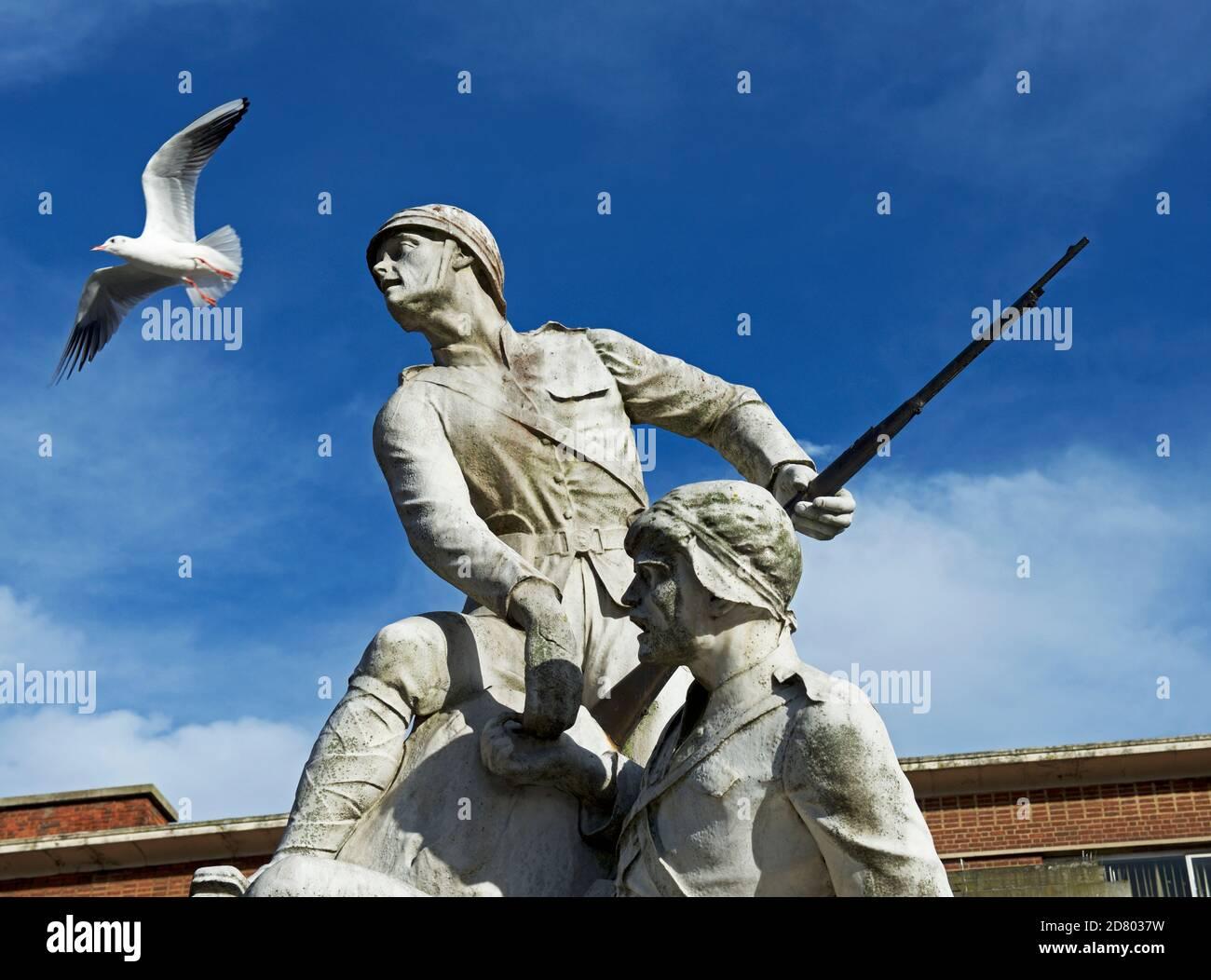 seagull-2D8037W.jpg